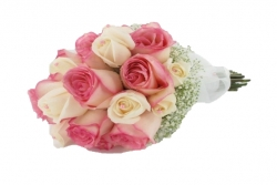 rose bouquet de tallo visto commpuesto por  rosas  y paniculata(80€)